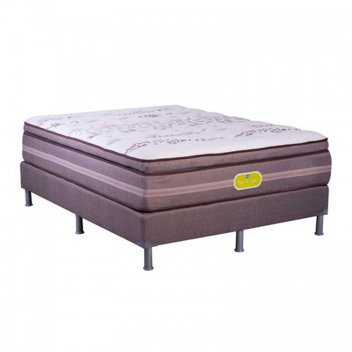 Cama Simmons Backcare